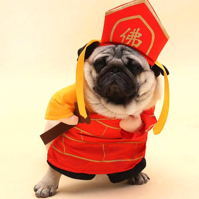 766ecd38755c7e Specjalne śmieszne pies kot budda kostiumy Tang Monk Cosplay kostium odzież  dla zwierząt prezenty ubrania dla Puppy pies koty kostium na Halloween y106  w ...