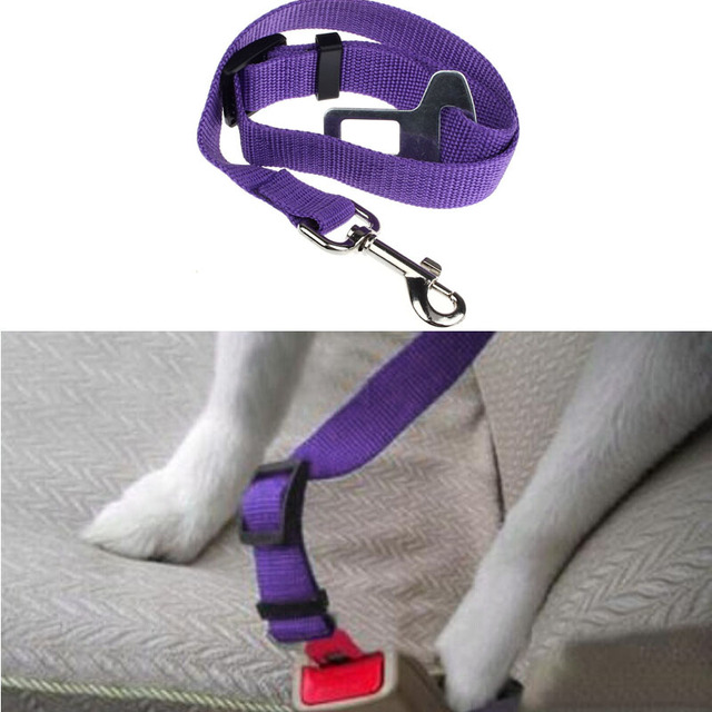 Fashion Heaven Hot Pretty Vehicle Car Seat Belt Seatbelt Harness Lead Clip Pet Cat Dog Safety drop shipping Sep8 1