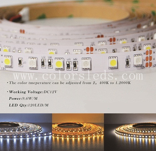 LED flexible strip light, Color Temperature can be adjusted, 3528 120 LED per meter, 5 Meters per Reel, MOQ 20meters