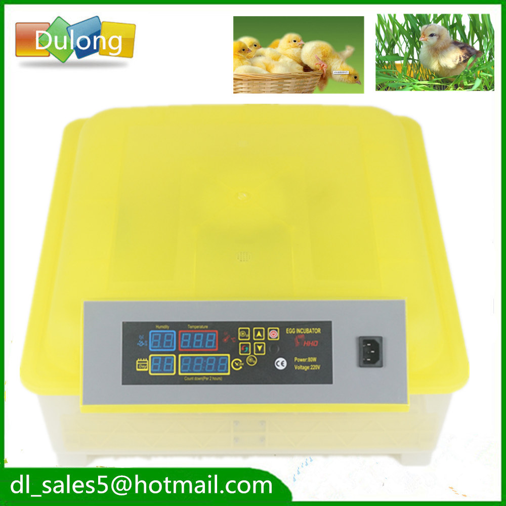 bird duck chicken egg hatching Chicken 48 egg hatchery incubators automatic machine for sale small chicken poultry hatchery machines 48 automatic egg incubator 220v hatching for sale