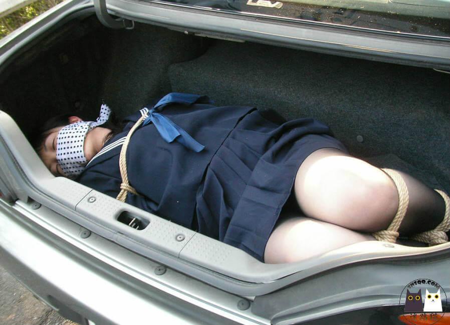 把M装进汽车去拉萨,去看那神奇的布达拉