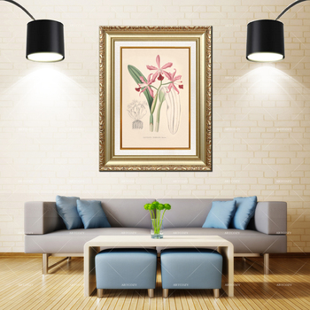 Artcozy Golden Frame Abstract cattleya elongata Flower Waterproof Canvas Painting