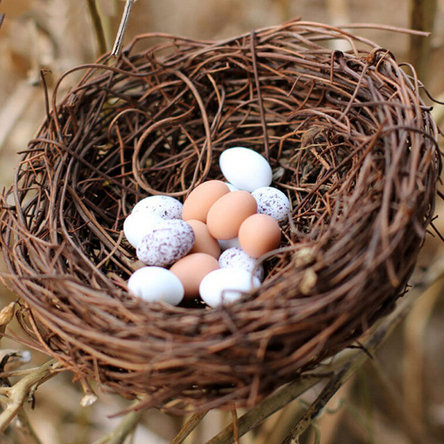 Online Shop Natural Outdoor Birds Accessories Garden Crafts Safe Handmade  Vine Brown Bird Nest House Home Nature Craft Holiday Decoration |  Aliexpress ...