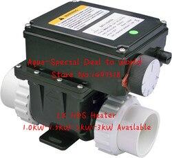 Bañera de hidromasaje, piscina spa de 3000W, calentador de agua LX H30-RS1 3kw, calentador eléctrico de spa con controlador de temperatura, Conector de 1,5 pulgadas