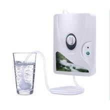 Diffuseur d'ozone pour Aquarium Co2 Ozonizador Ozonio Gerador purificateur d'air et d'eau générateur d'ozone Machine à oxygène