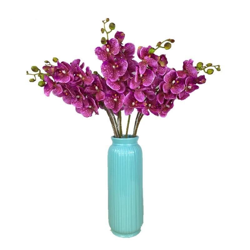 INDIGO-10 stks Luipaard Phalaenopsis Latex Coating Orchidee Real - Feestversiering en feestartikelen - Foto 1