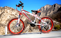 High Quality Export Youth 21 Speed MTB Bike Double Disc Brake Street Mountain Bike Cycling Child