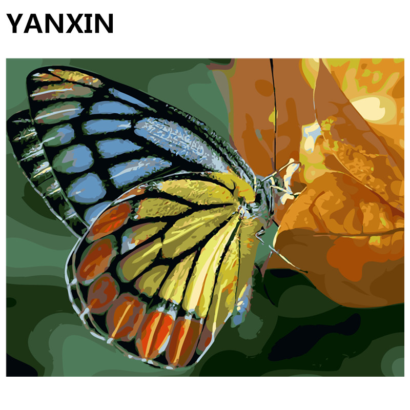 Yanxin DIY Рамки Краски ing по номерам масла Краски стены Книги по искусству Фотографии декора для украшения дома E663