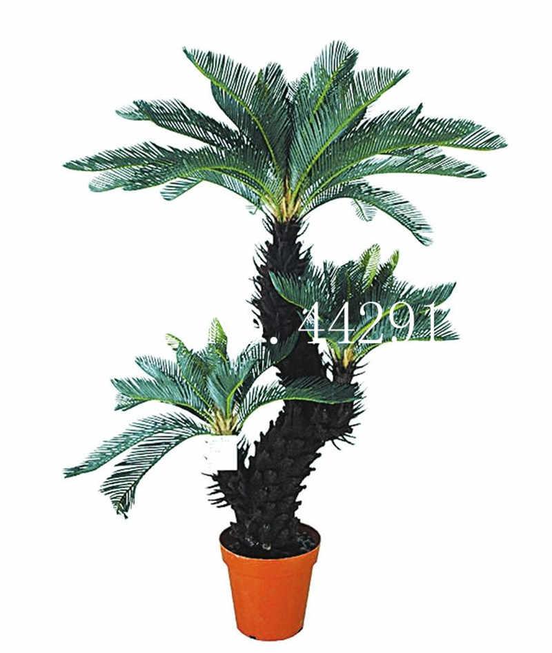 10 Pcs/bag Biru Cycas Bonsai, Pohon Palem Sagu Tanaman, Cycas Pohon Bonsai, pemula Kecepatan 97% Langka Tanaman Pot untuk Rumah Taman