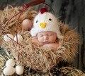 Бесплатная доставка, Пасха Чик детские hat, симпатичные мужская шапочка, 0-3 Месяцев, новорожденный фото опора, новорожденный вязание шляпы