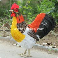 Zilin Manufacturer Lifesize Rooster Model 41 20 44 Cm Ideal As Home Or Garden Decor