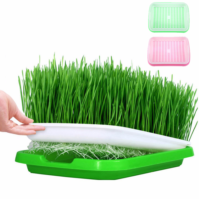 Durable Hydroponics Basket Nursery Tray Seed Pot Flower Plant Germination Grow Box Vegetable