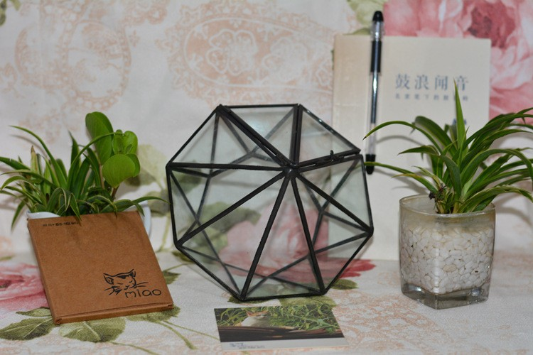Diamond Geometric Polyhedron Glass Terrarium2