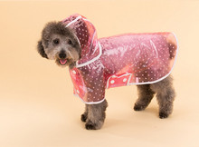 dog raincoat for chihuahua waterproof