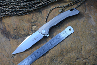 TS43 TWO SUN D2 Blade Knives Survival Titanium Handle Knife For Gift Hunting Fishing Knife TOOl