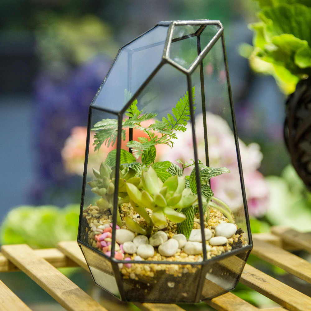 Irregular Glass Flower Pot Black Modern Geometric Terrarium Fairy
