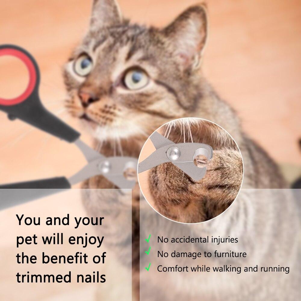 Professional Pet Cat Nail Clipper  My Pet World Store