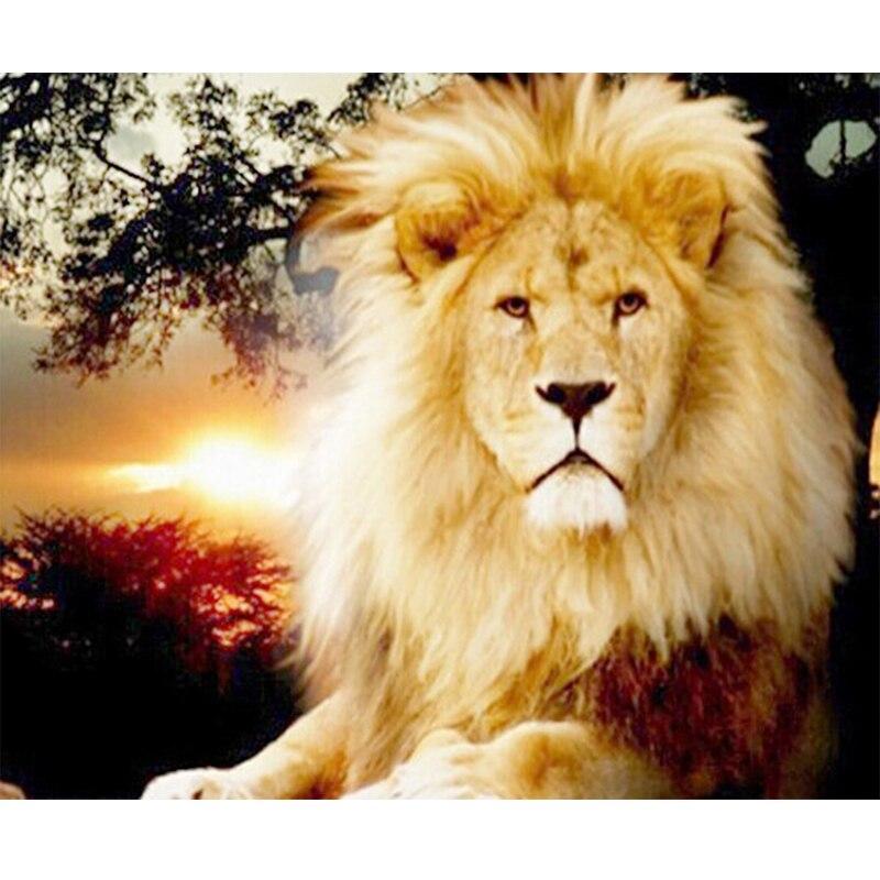 только спасибо лев картинки фотографиях надя