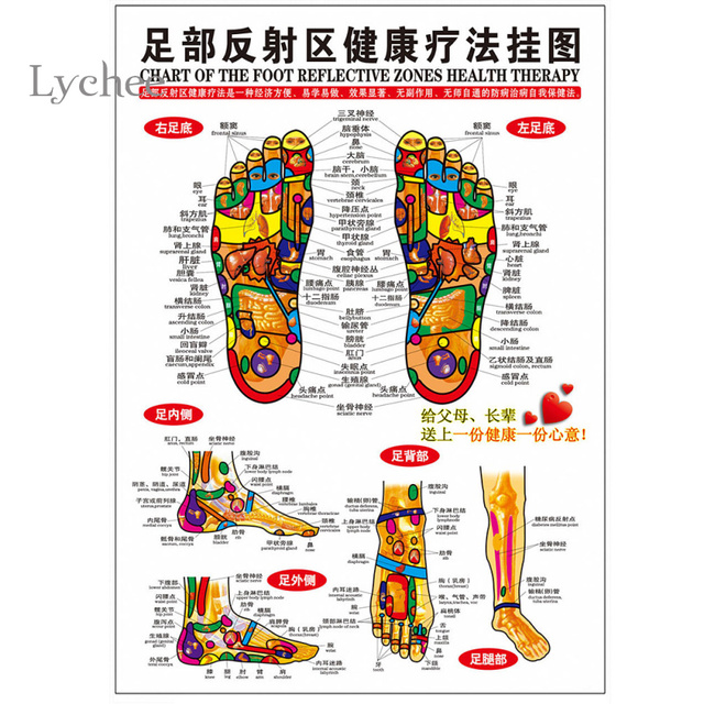 Lychee 5 Pieces Foot Reflexology Zones Therapy Chart Wall Poster Acupoint Sticker