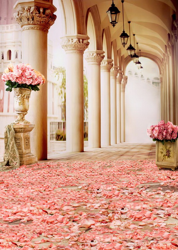 Custom vinyl cloth palace pink rose flowers corridor photography - Camera and Photo