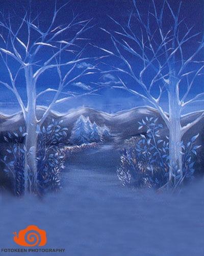 10 X 20ft Xmas/Winter Scenic Muslin Hand Painted Photo studio Backdrop Background christmas backdrop photography|backdrop photography|christmas backdrop photography|backdrop background - title=