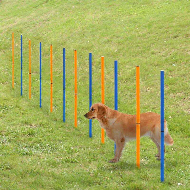 Hoopet Pet Training Poles Outdoor Dog Agility Sports