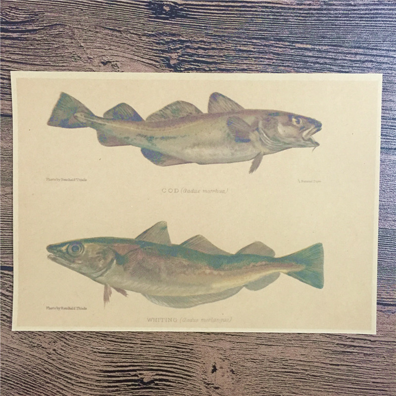 CAS-026 back to the future kraft paper WHITTNg Fish wall art Vintage poster pictures home decor for bathroom 42x30 cm