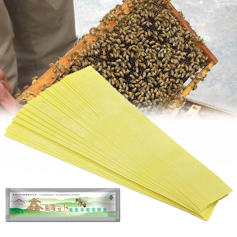 20pcs Beekeeping Fluvalinate Mite Killer Tool Set Pest Control Varroa Strip DE
