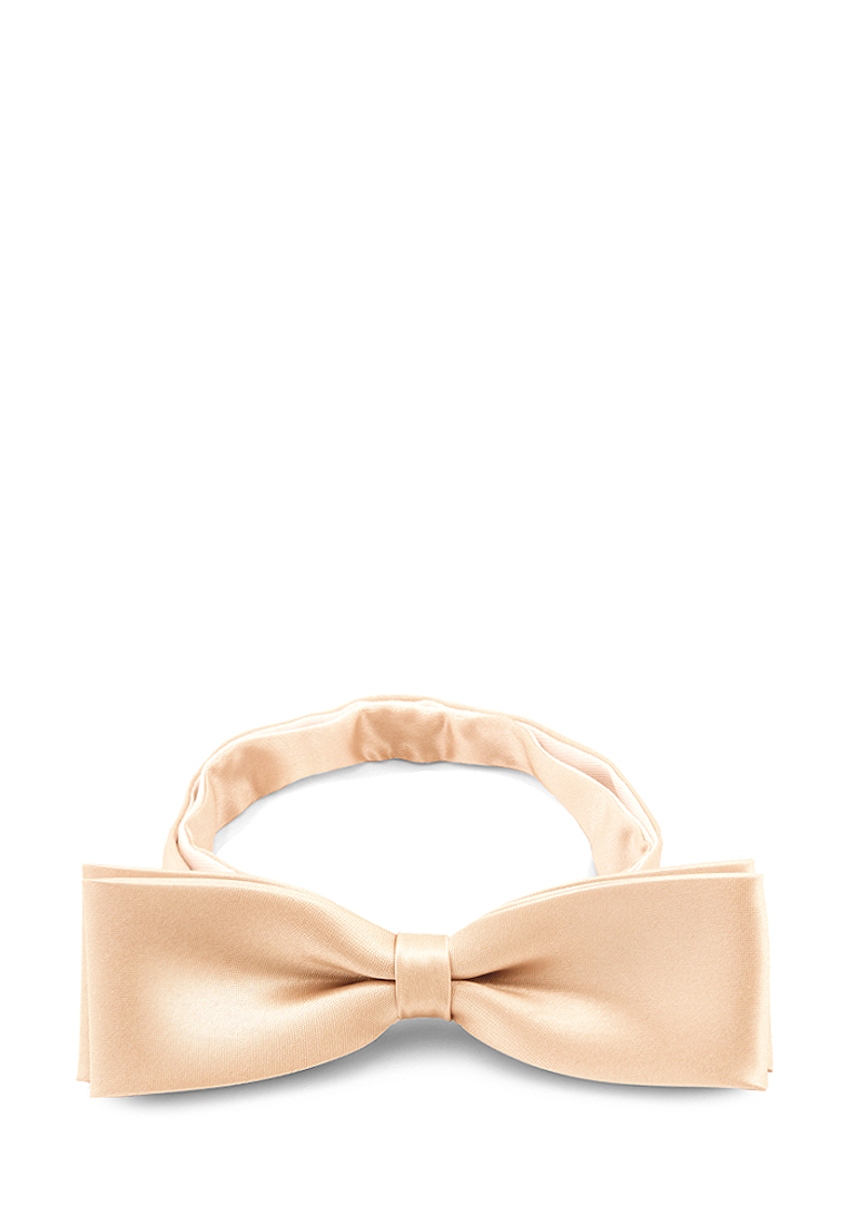 [Available from 10.11] Bow tie male GREG Greg poly 17 beige rea 1 103 Beige