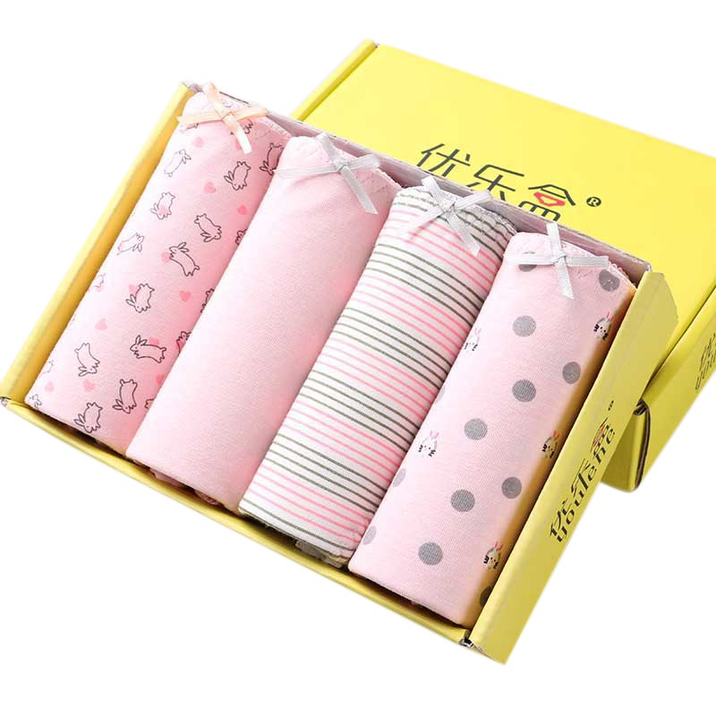 Buy Lot 4 Pcs Women's Underwear Cotton Sexy Lace Panties Everyday Briefs Lingerie Girls Ladies Knickers M L XL Women