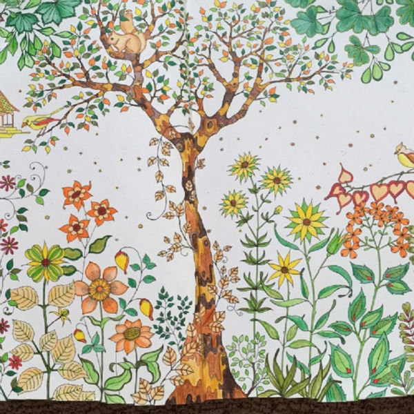 secret garden an exploration of hand painted wonderland coloring book hand painted beautiful classic coat get a graphic pen in books from office school - Secret Garden Book