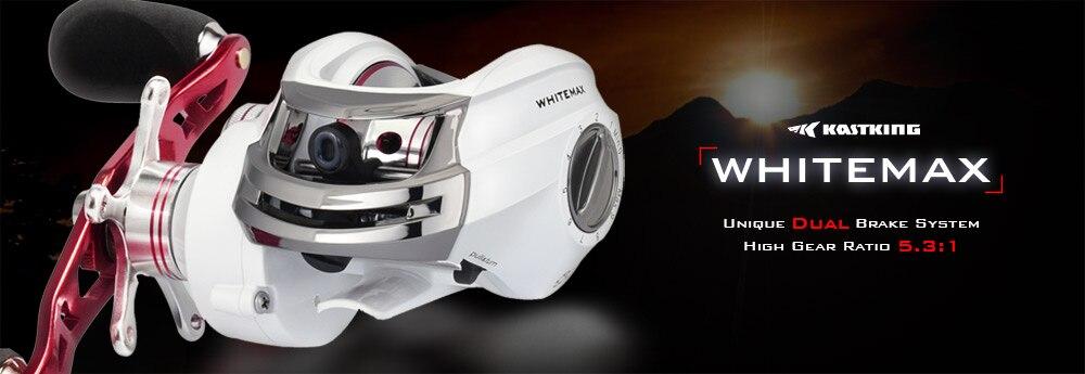 Whitemax PC--Details (1)