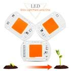 Full Spectrum COB LED Grow Light Chip 20W 30W 50W LED COB Chip 380-840nm 220V DIY Grow light Floodlight Indoor Plant Grow&Flower