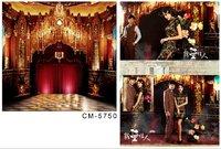 5X7ft new 2014 Gorgeous wedding background Digital cloth photography backdrops photo curtains backgrounds vinyl backdrop