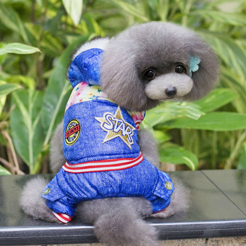 2016 new winter high-quality cotton thick hooded pet clothing Teddy Pet Clothes printing Four-leg link dog coat