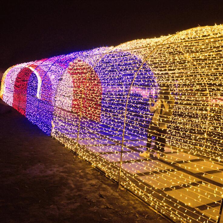 AC EU 220V 100M 600 LEDs string Fairy light lamp holiday Patio Christmas Wedding decoration Waterproof outdoor light garland