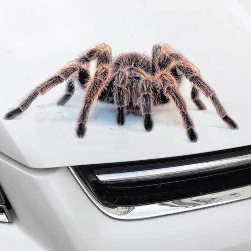 Image 4 - Spider Sticker Crawling Car Vehicle Truck Window Sticker Hood Decal 4 Pattern-in Car Stickers from Automobiles & Motorcycles