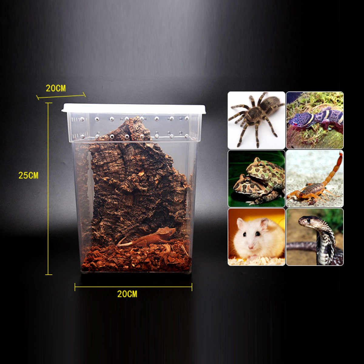 Transparent Pet Reptiles Feeding Tank Terrariums Insect Lizards Snake Spiders Breeding Boxes Cage House Reptiles Accessories