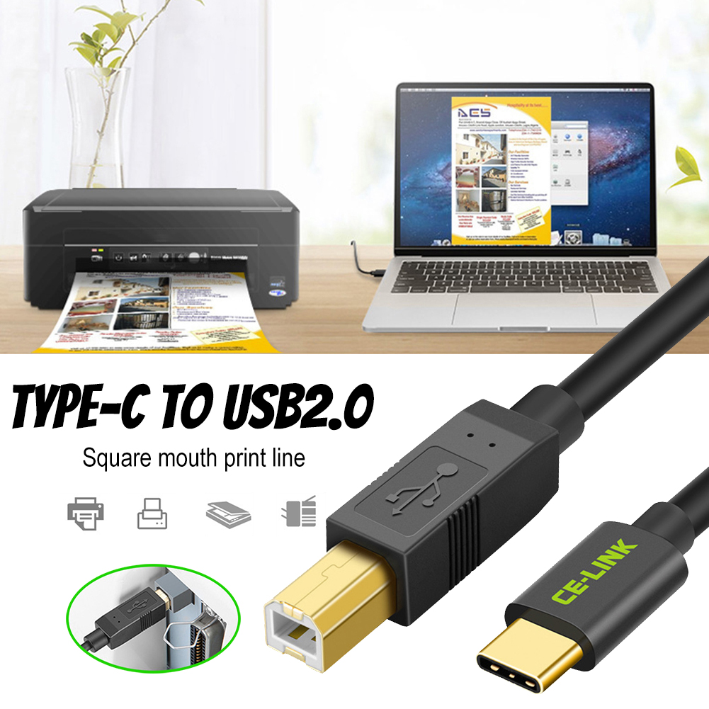 Gold Plated Type C Male To USB 2.0 B Type Male Cable Connector For Cell Phone And Printer 4