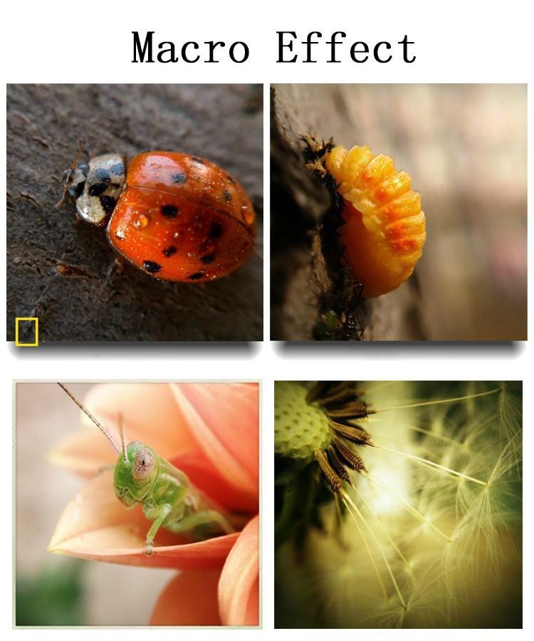 Universal-3-in1-fisheye-fish-eye-wide-angle-lens-for-iphone-5-6-samsung-galaxy-lg-phone-lente-olho-de-peixe-para-celular-Lentes (3)