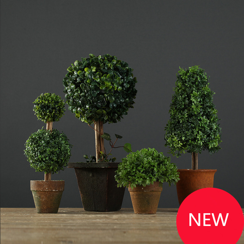 pequeo bonsai plantas de escritorio decoracin rbol bonsai plantas decoracin del hogar