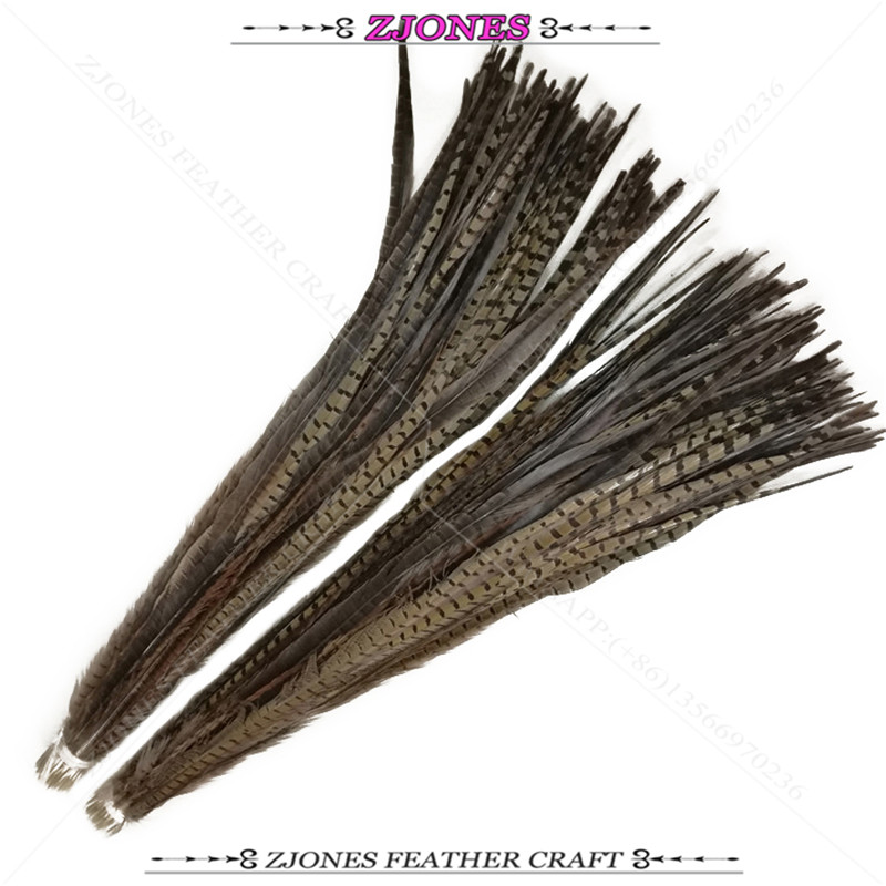 Wholesale 100pc Natural 75 100cm Ringneck Pheasant Feathers Lady Amherst Pheasant Feather Dress Carnival Party Samba
