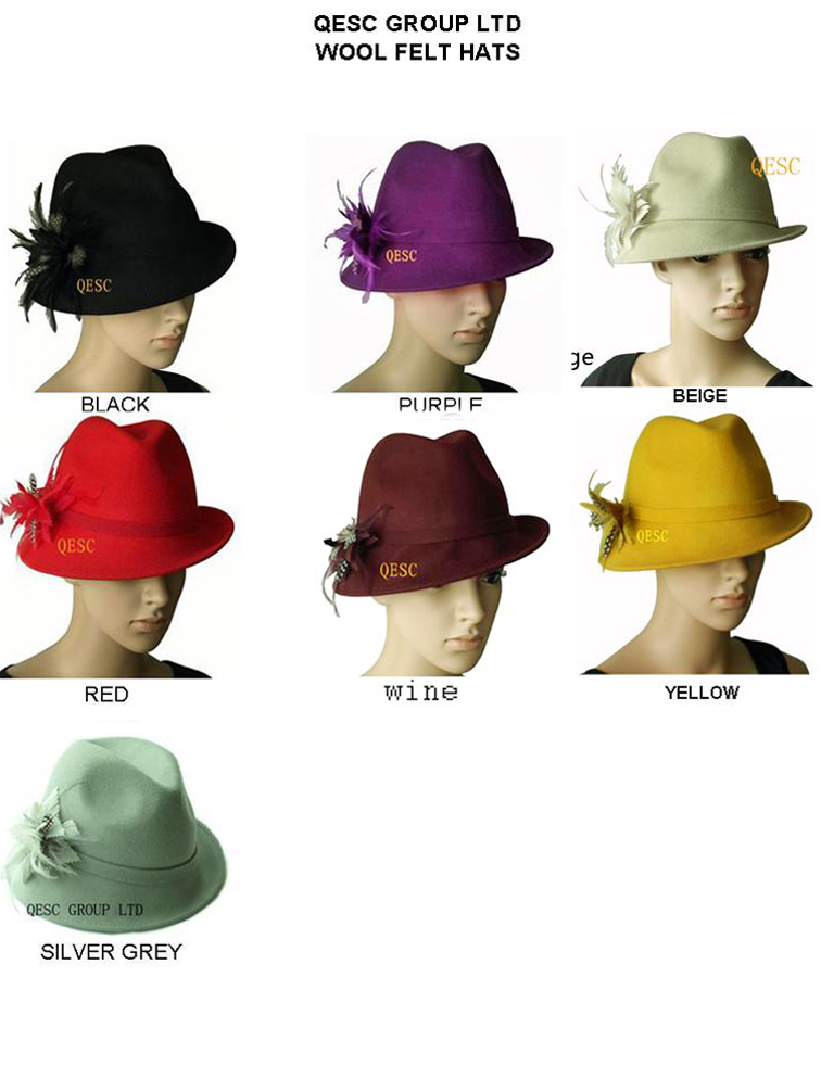 f8d1ea91ef9 Wholesale Attractive multiple color NEW 6 colors arrival.100% Wool felt hat  with feathers