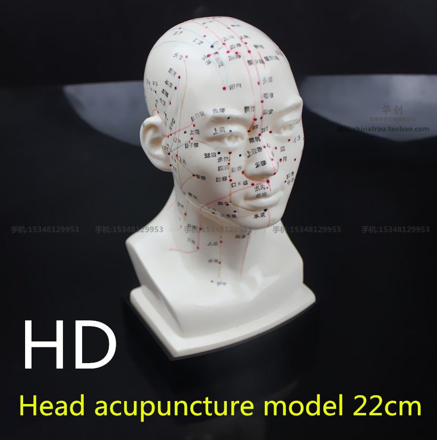 Acupuncture 22, Research paper Sample