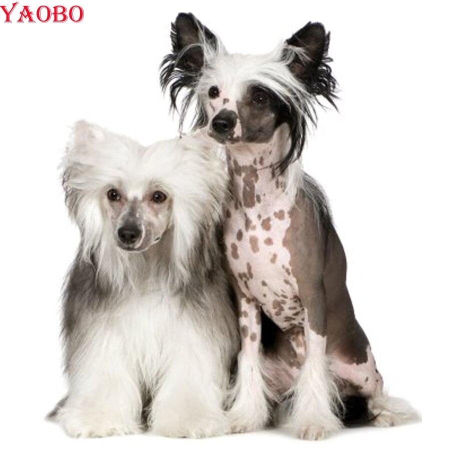diy-5d-diamond-painting-cross-stitch-animal-chinese-crested-dog-diamond-embroidery-mosaic-kits-handmade-hobbies-and-crafts