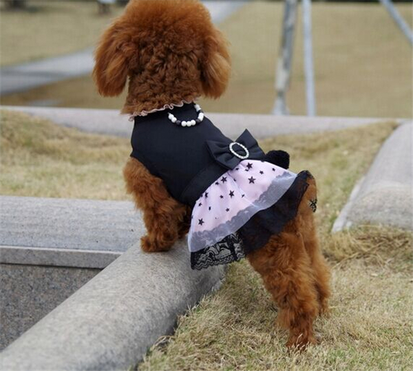 Teddy Bear Dog Chihuahua Clothing Summer Spring Cloth Cute Doggie Clothes Papillon Schnauzer Pomeranian Pug In From Home