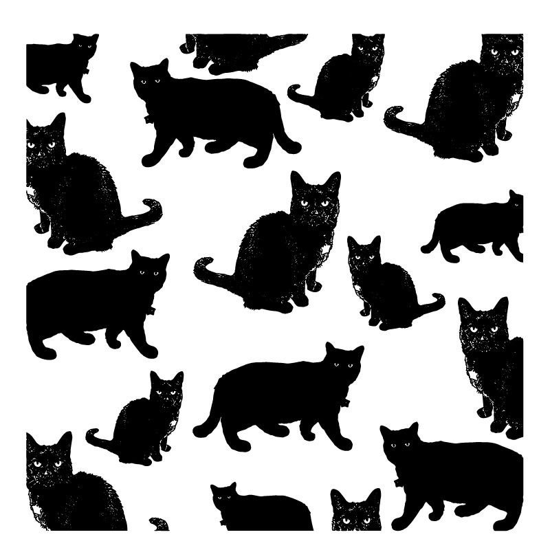Cute Lovely Persian Cat New Clear Stamps Transparent Seal For DIY Scrapbooking Card Making Album Decorative Silicon Stamp Craft