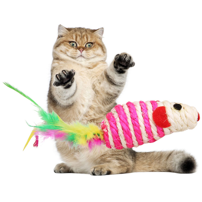 Fun Cat Toys : Popular handmade cat toy buy cheap lots