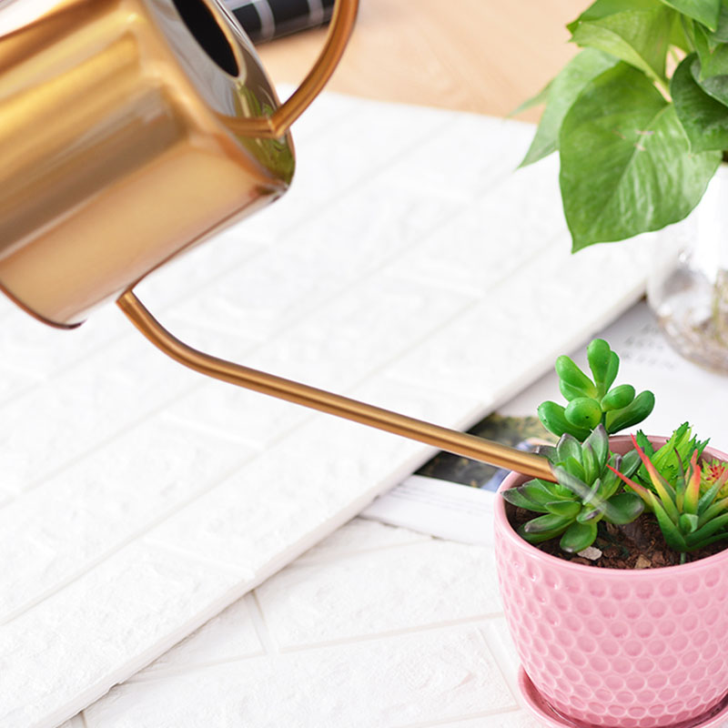 Cheap Price Watering Can Golden Garden Stainless Steel