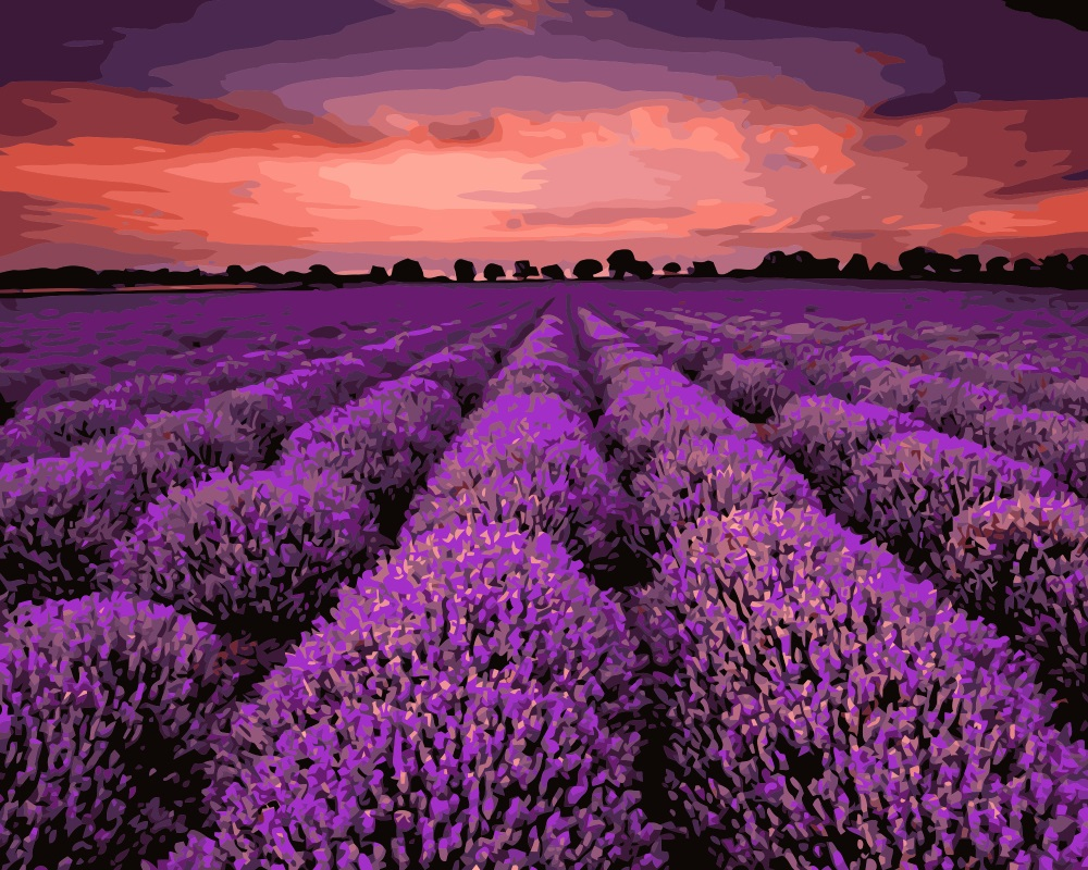 Aliexpress buy mahuaf i702 beautiful lavender flowers field aliexpress buy mahuaf i702 beautiful lavender flowers field diy painting by numbers hand painted canvas digital oil paintings for living room from izmirmasajfo